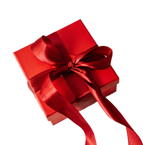 The perfect Christmas gift Mapify